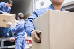 Brent apartment movers
