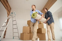 Canonbury apartment movers