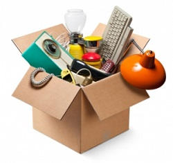 student move Pimlico